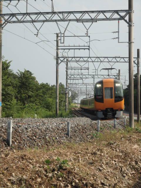 DSC08995(1).jpg
